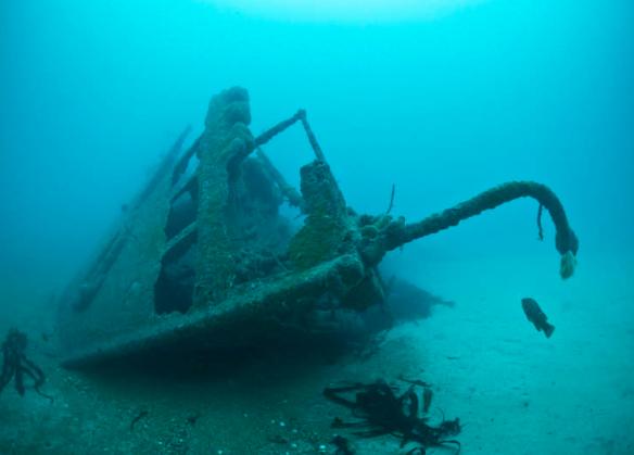 Steamer-ship-cargo-Eildon-sunken-in-19154